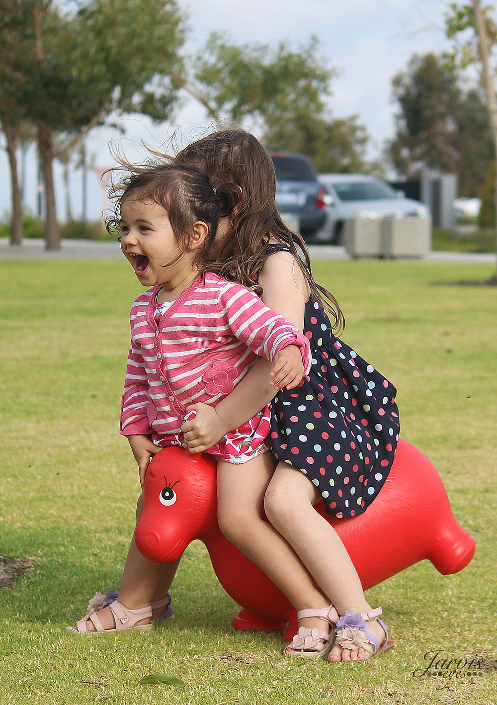 Kids Bouncer Horse