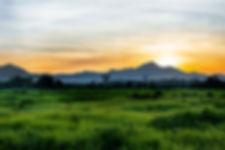 Gunung Palung Sunrise.jpg
