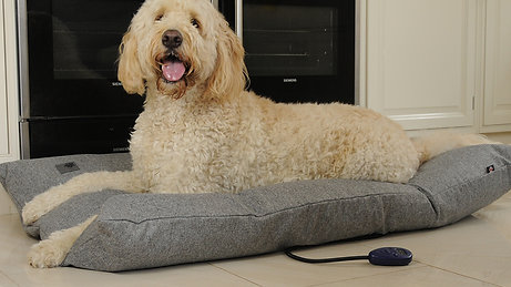 Sledmere Large Heated Dog Pillow Bed