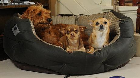 Harewood Large Heated Dog Bed