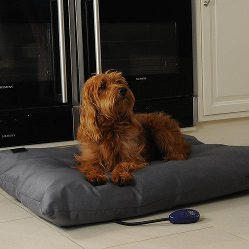 Kiplin Medium Heated Dog Pillow Bed