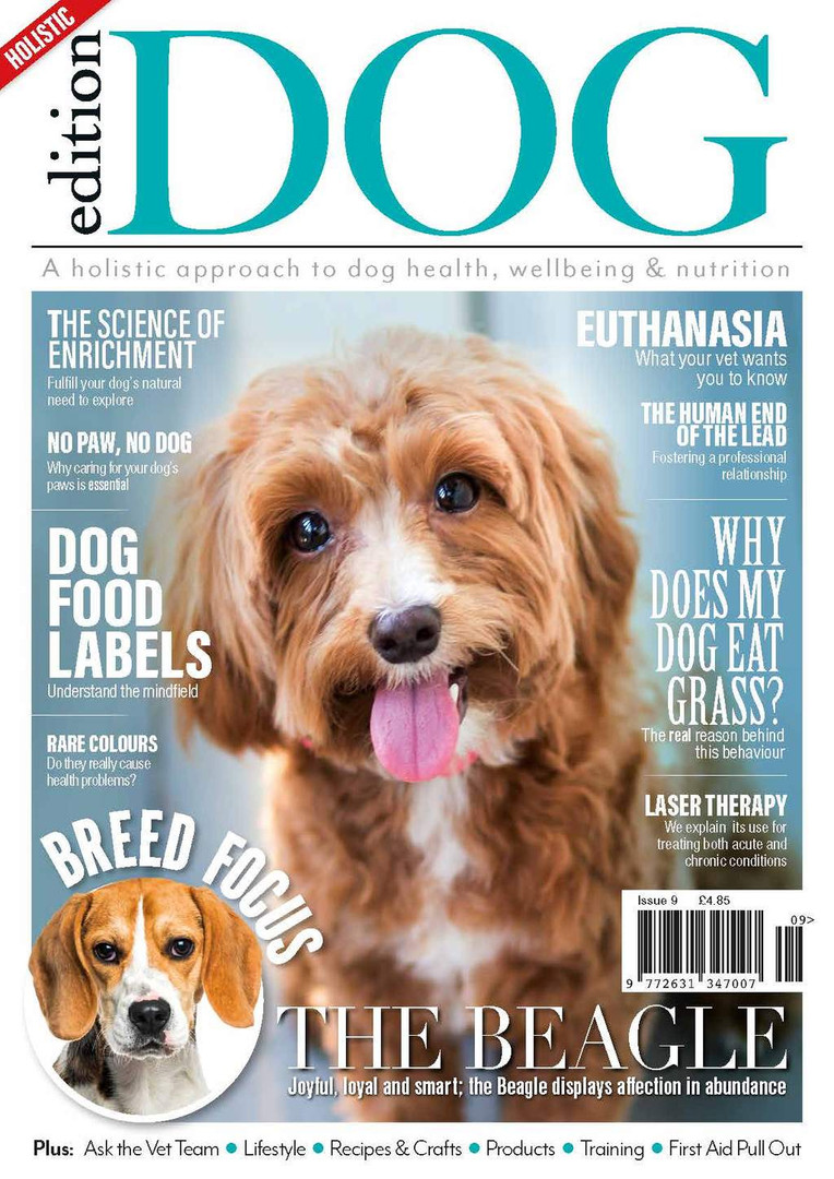 Edition Dog Magazine