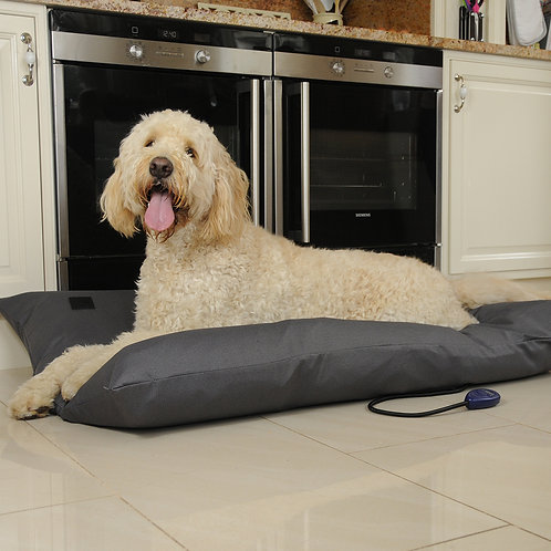 Kiplin Large Heated Dog Pillow Bed