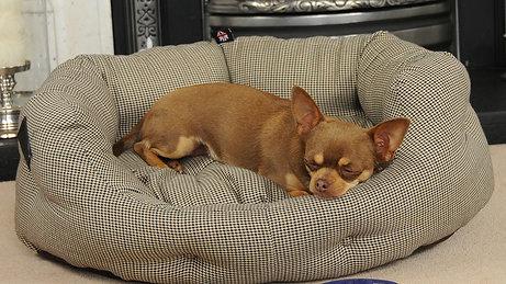 Ripley Small Heated Dog Bed