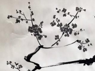 """""""Voglio fare con te quello che la primavera fa con i ciliegi"""""""