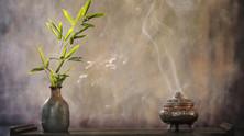 La quiete e il bambù