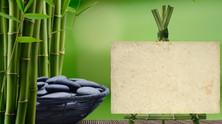Il messaggio del bambù