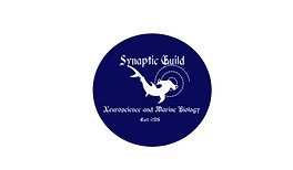 Synaptic Guild