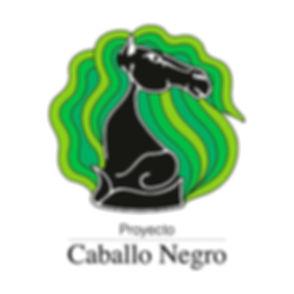 Logo P.C.N. RGB.jpg