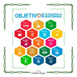Redes Sociales (ONU ODS).jpg