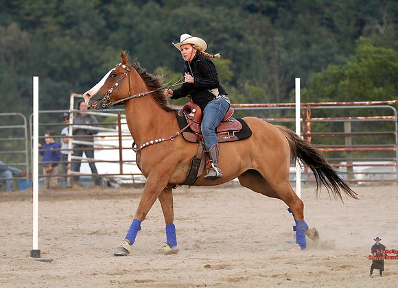 Horse Rider 20