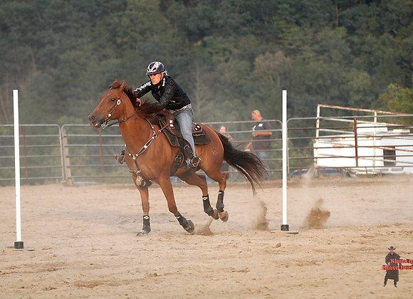 Horse Rider 34