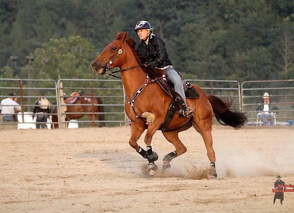 Horse Rider 33
