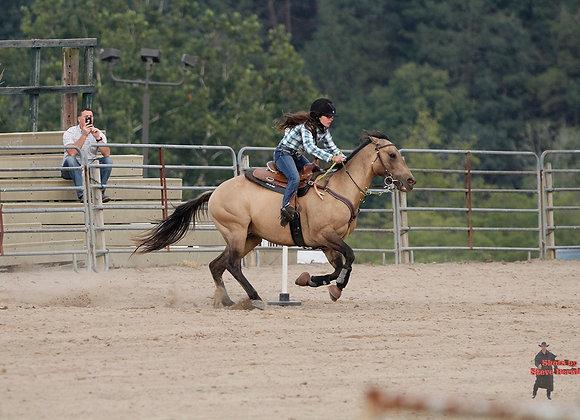Horse Rider 2