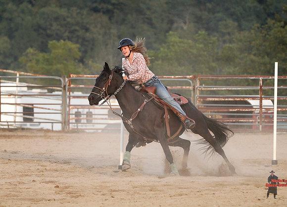 Horse Rider 29