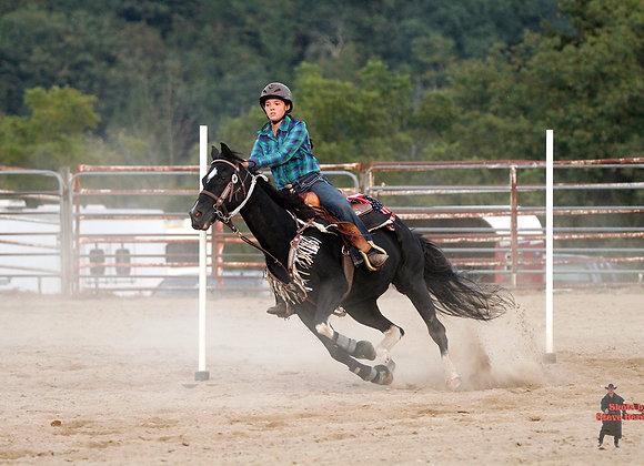 Horse Rider 27