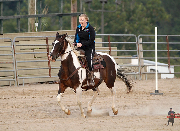 Horse Rider 13
