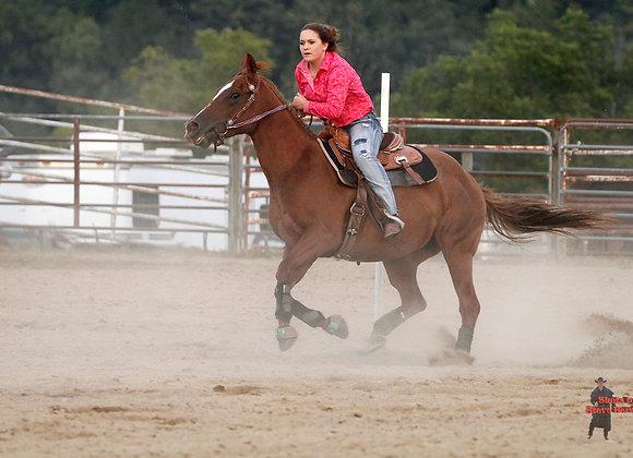 Horse Rider 17
