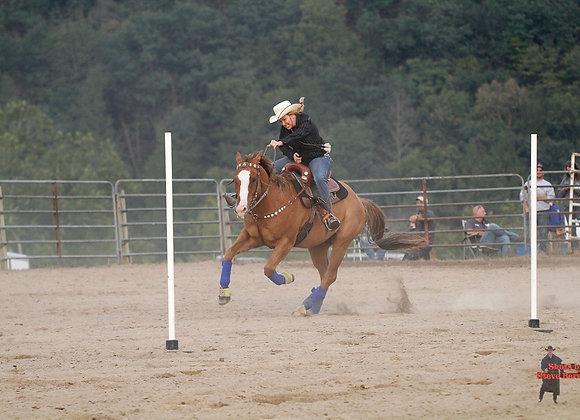 Horse Rider 21