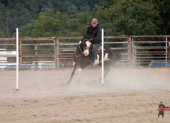 Horse Rider 23