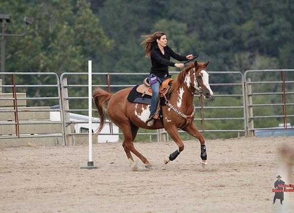 Horse Rider 6
