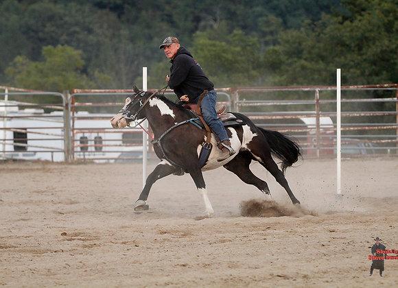 Horse Rider 24