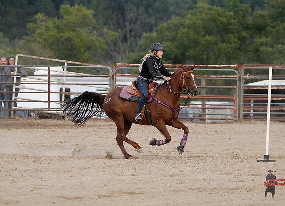 Horse Rider 4