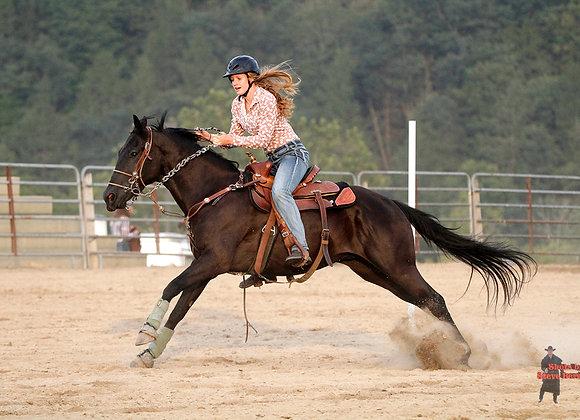 Horse Rider 30