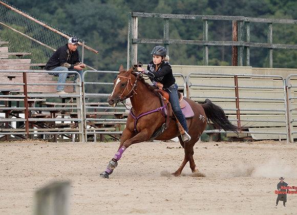 Horse Rider 5