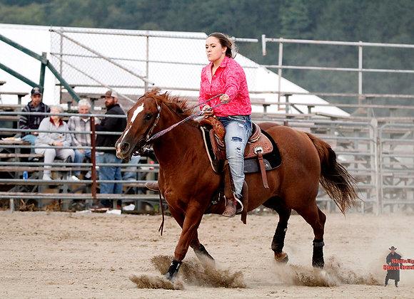 Horse Rider 19