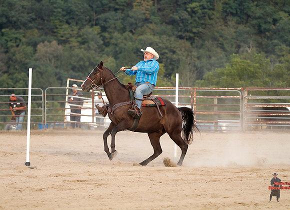 Horse Rider 15