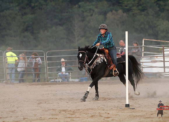 Horse Rider 28