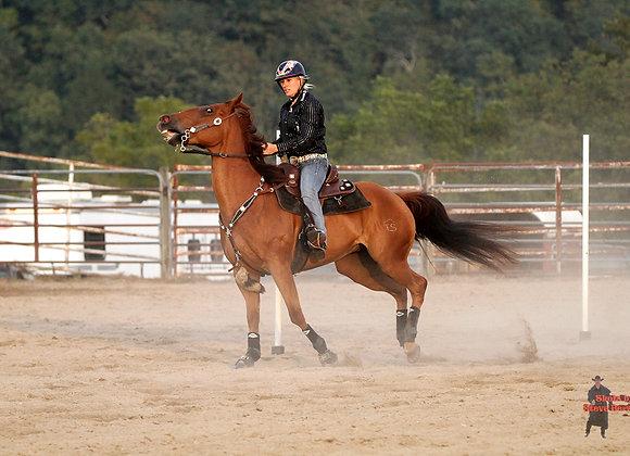 Horse Rider 32