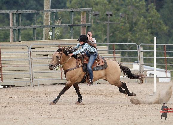 Horse Rider 3