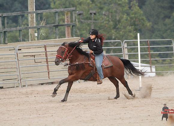Horse Rider 10