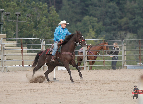 Horse Rider 8