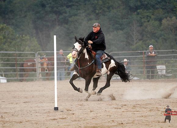 Horse Rider 25