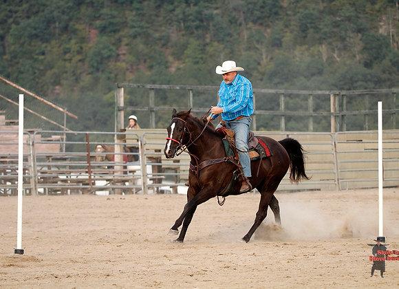 Horse Rider 16