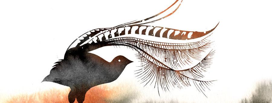 Lorenzo the Lyrebird
