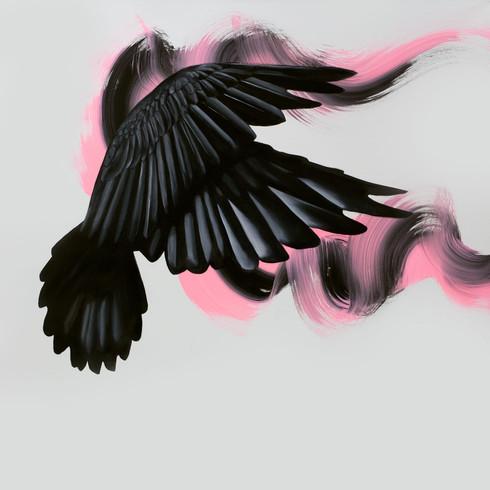 Blackbird, 2019