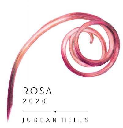X12 רוֹסָה 2020| Rosa 2020