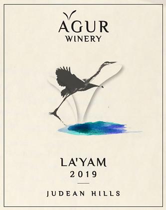 X6 לַיָּם 2019 | Layam 2019