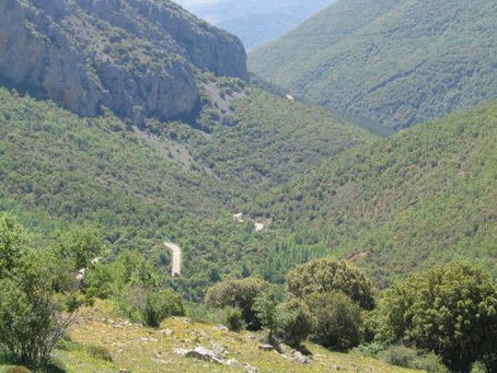Un rayo causa un incendio entre la Cueva y Beratón