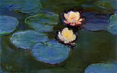 Claude_Monet_-_Water_Lilies_(14704485846