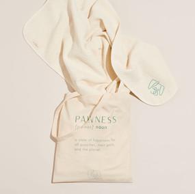 Pawness | brand identity