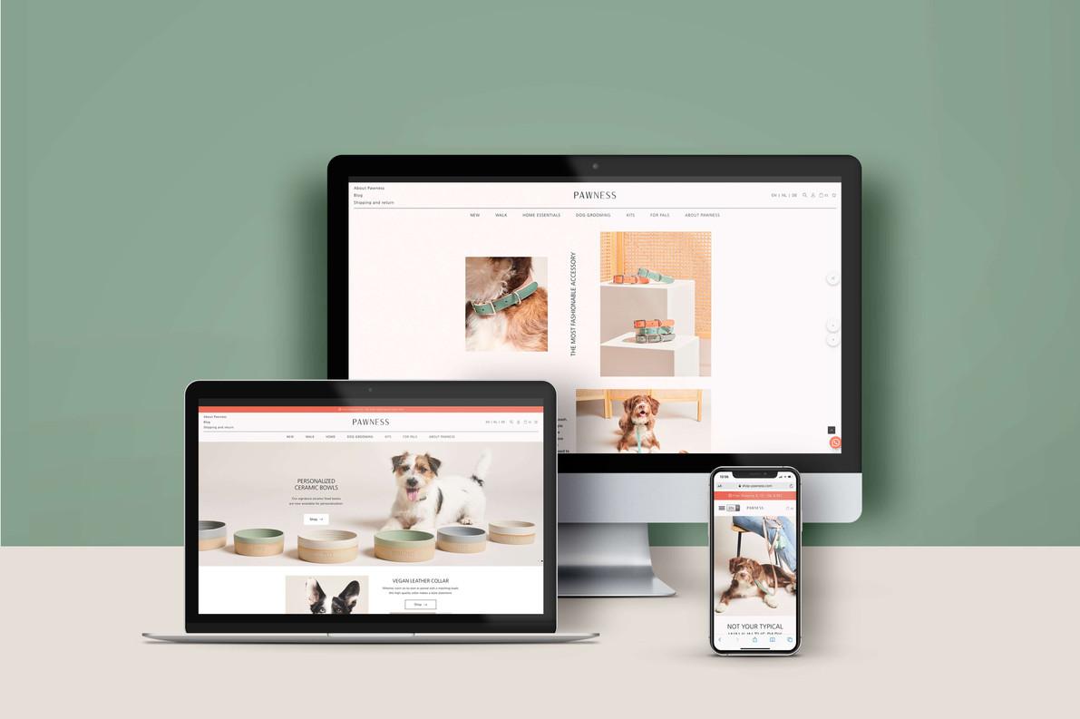 Pawness | Webdesign