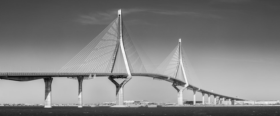 José León Carranza Bridge