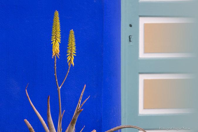 Marrachech blått