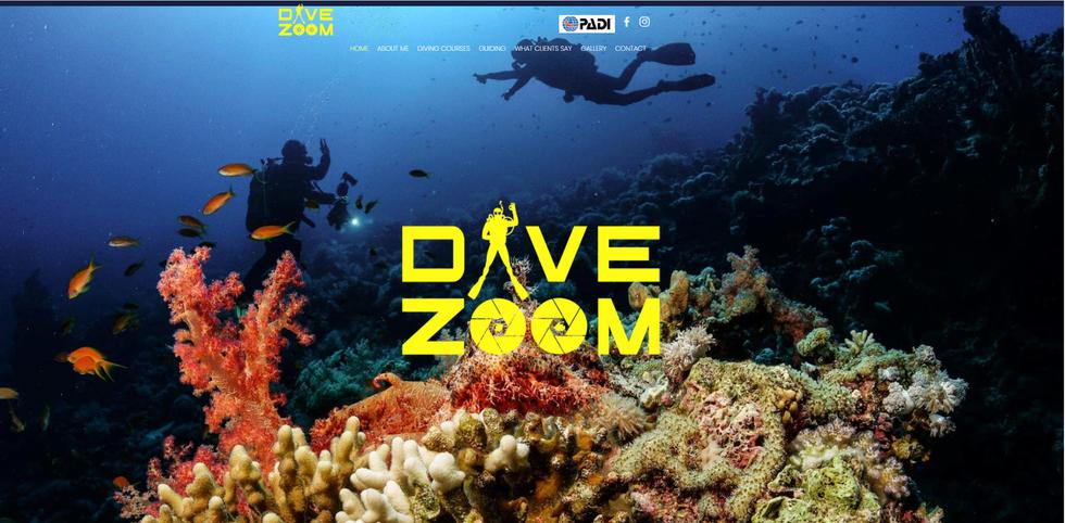 divezoomwebsite.png