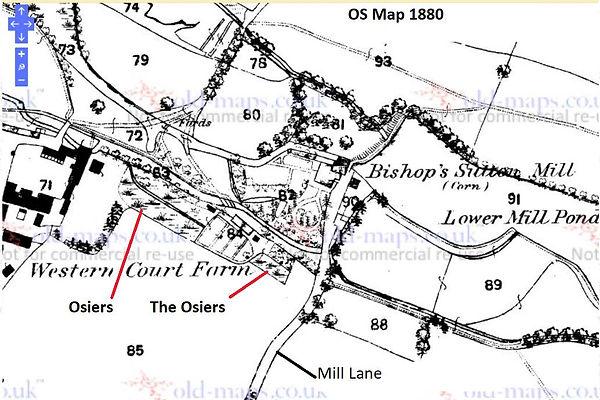Bishop's Sutton, the Osiers